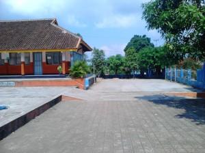 DSC_0107 (2)